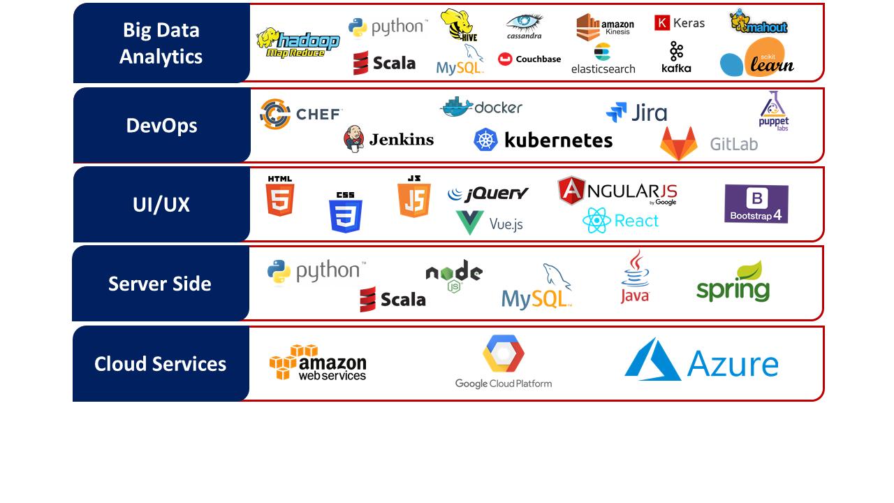 Technology Expertise_VigourSoft